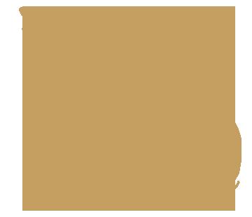 Florida State Representative GIS