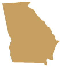 Georgia State Representative GIS