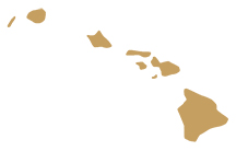 Hawaii State Representative GIS