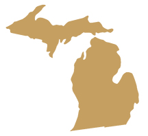 Michigan State Representative GIS