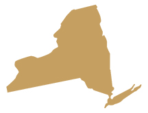 New York State Representative GIS