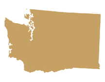 Washington State Representative GIS