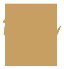 Wisconsin State Representative GIS